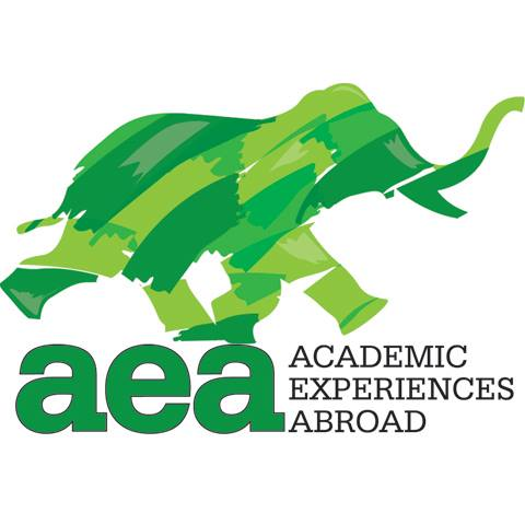 Academic Experiences Abroad